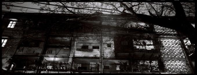 Oasis of silence – Ốc đảo tĩnh lặng – 2008
